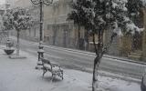 Neve Cianciana (8)